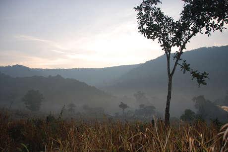 Ind-don-ld-2009-17_460_landscape