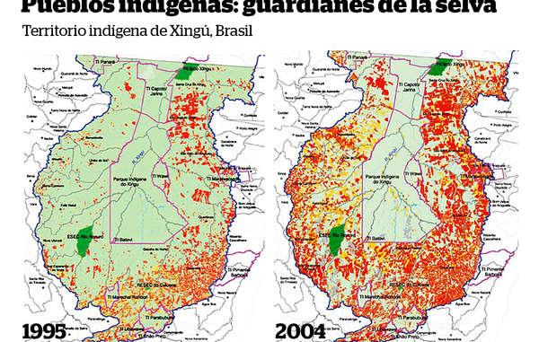El parque indígena Xingú (delimitado con una línea rosa) es el hogar de varios pueblos indígenas. Constituye una barrera vital contra la deforestación (marcada en rojo) en la Amazonia brasileña.