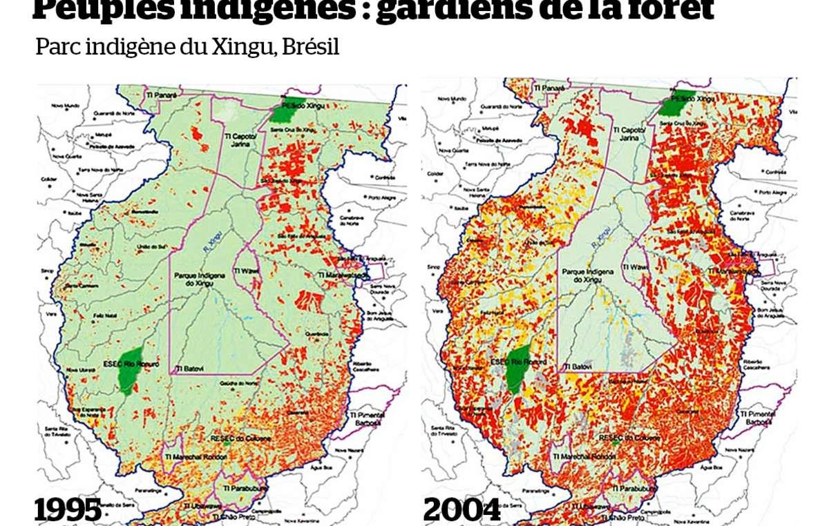 Le parc autochtone du Xingu (entouré en rose) abrite plusieurs groupes indiens. Il représente une importante barrière à la déforestation (en rouge) de l'Amazonie brésilienne.