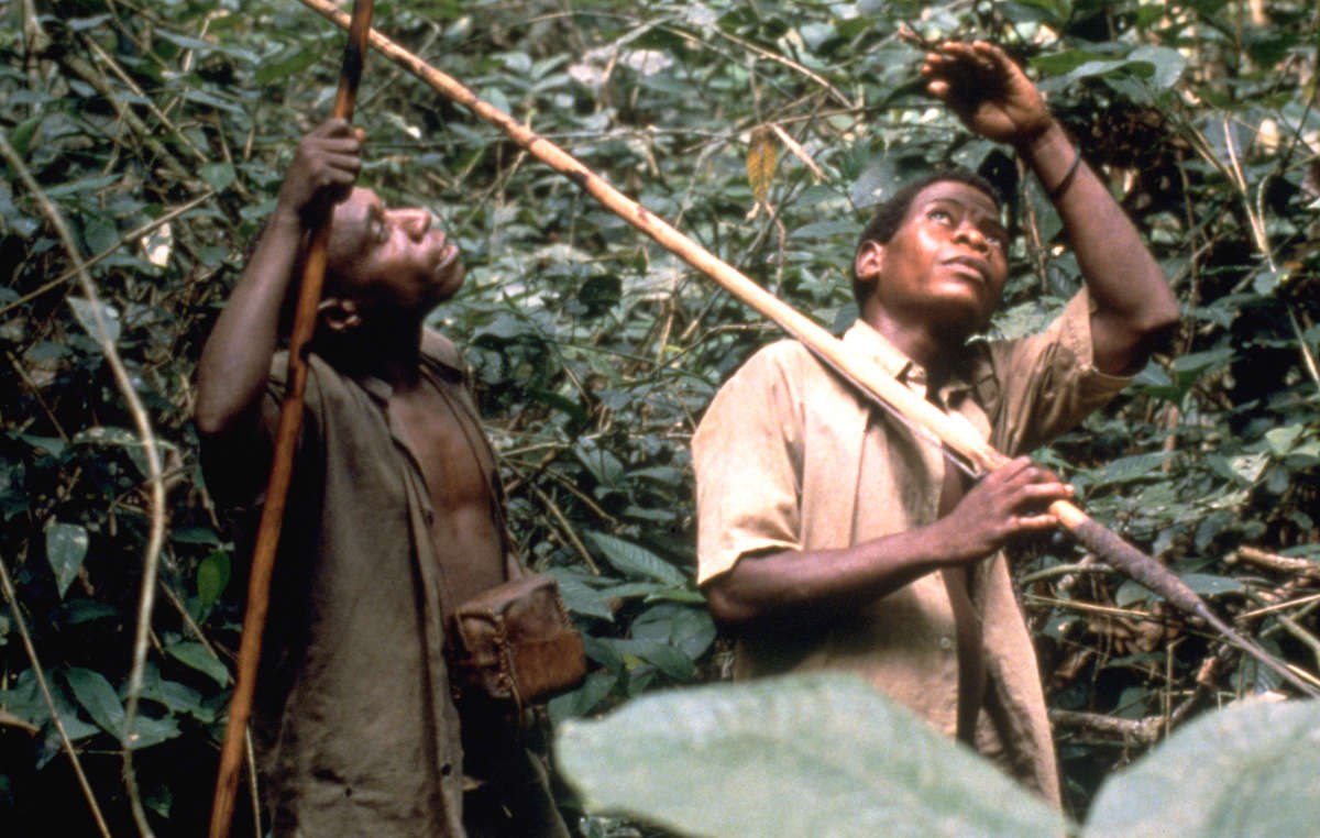 Tribal peoples like the Baka in southeast Cameroon face abuse by anti-poaching squads.