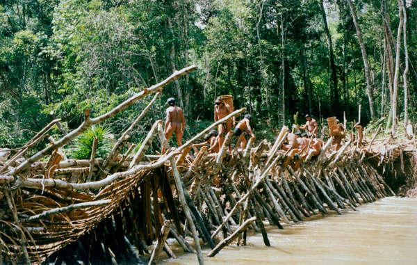 Homens Enawenê Nawê constroem represas de madeira para capturar peixe, Brasil.
