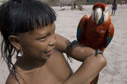 Enawene Nawe boy with his pet macaw, Brazil.