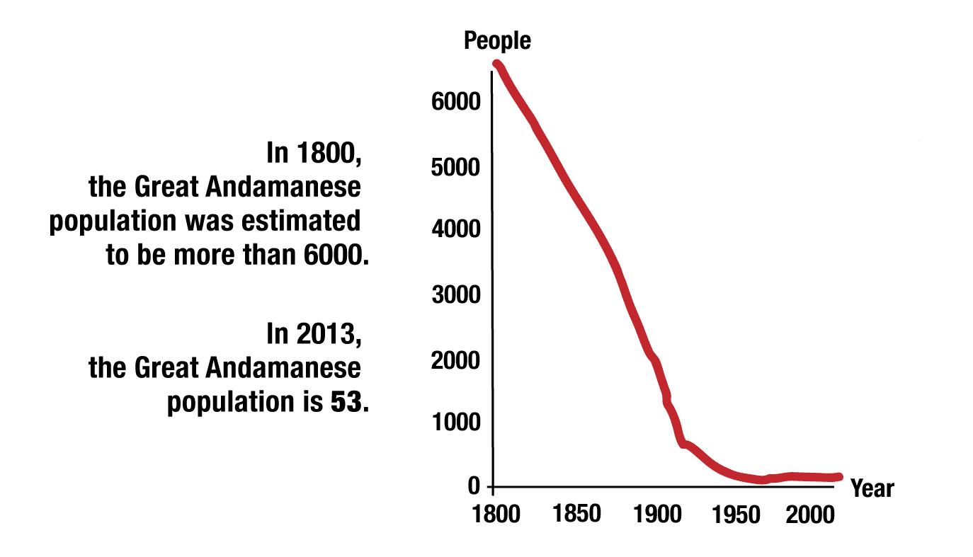 Andamanese graph