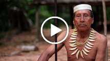 Uncontacted Matsés
