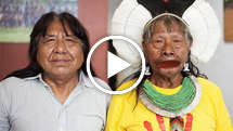 Uk-kayapo-2014-9974-original_widescreen_medium_small_play