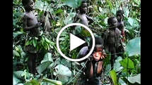Pygmies-thumb_widescreen_medium_small_play