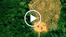 Uncontacted-tribes-brazil-thumb_widescreen_medium_small_play
